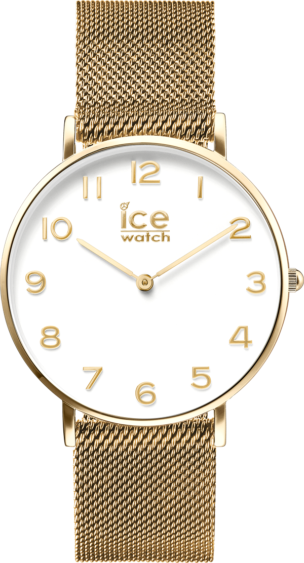 ice-watch_CITY Milanese_6_E 169,00